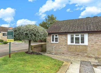 Thumbnail 1 bed semi-detached bungalow to rent in St. James, Beaminster, Dorset