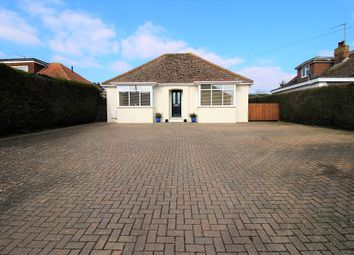 Thumbnail 3 bed detached bungalow for sale in Rattle Road, Westham