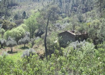 Thumbnail Land for sale in Martim Branco, Almaceda, Castelo Branco (City), Castelo Branco, Central Portugal