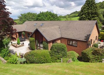 Thumbnail 5 bed bungalow for sale in Sharnbrook, Upper Dolfor Road, Upper Dolfor Road, Newtown, Powys