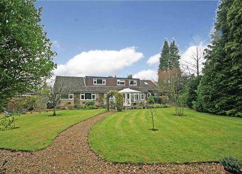 Thumbnail 5 bed detached bungalow for sale in West Byfleet, Surrey