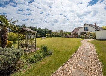 Thumbnail 4 bed detached house for sale in Main Road, Thorley, Yarmouth