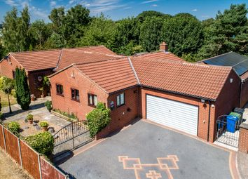 Thumbnail 5 bed detached bungalow for sale in Redbrook Avenue, Hasland, Chesterfield