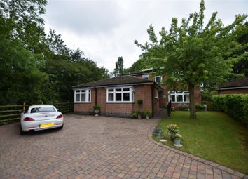 4 bed detached house for sale in Pitsford Drive, Loughborough LE11