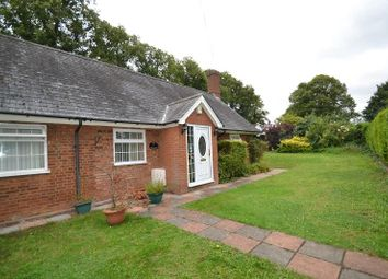 Thumbnail 3 bed semi-detached bungalow for sale in Green Tye, Much Hadham