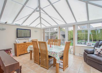 Thumbnail 4 bed detached house to rent in Portsmouth Road, Clacton-On-Sea