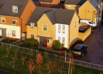 Thumbnail 4 bed detached house for sale in Coriander Drive, Hampton, Peterborough