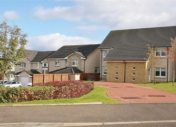 Thumbnail 2 bed semi-detached house for sale in Mckenna Avenue, Stoneywood, Stirlingshire