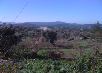 Thumbnail Land for sale in Bahceyaka-Koyu, Bodrum, Mugla, Turkey