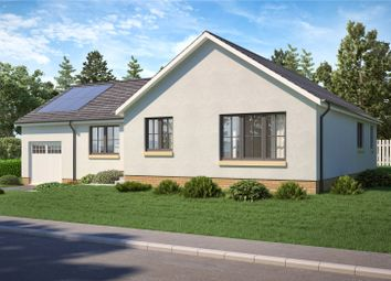 Thumbnail 3 bedroom detached bungalow for sale in The Aberdour, Maple Grove, James Street, Blairgowrie, Perth And Kinross