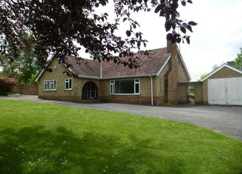 Thumbnail 3 bed property to rent in Beech Rise, Bury St. Edmunds