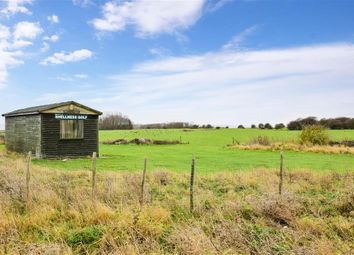 Thumbnail 2 bedroom detached bungalow for sale in Seaview Avenue, Leysdown-On-Sea, Sheerness, Kent