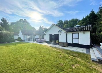 Thumbnail Bungalow to rent in Station Road, Lingfield