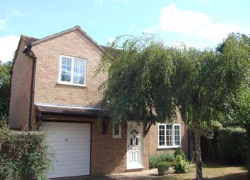 Thumbnail 4 bed detached house to rent in Quilp Drive, Chelmsford, Essex