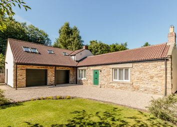 Thumbnail 4 bed detached house for sale in Wallnook Lane, Durham, County Durham