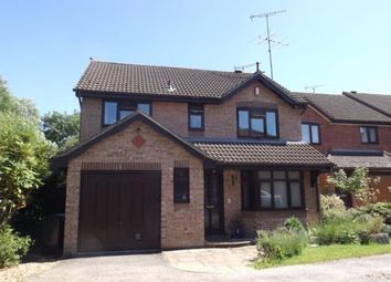 Thumbnail 4 bed detached house for sale in Copdock, Ipswich, Suffolk