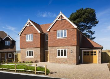 Thumbnail 4 bed property for sale in Station Road, Berwick, Polegate