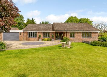 Thumbnail 4 bedroom bungalow for sale in The Drive, Amenbury Lane, Harpenden, Hertfordshire