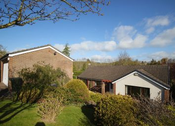 Thumbnail 2 bed detached bungalow for sale in Enderby Drive, Hexham