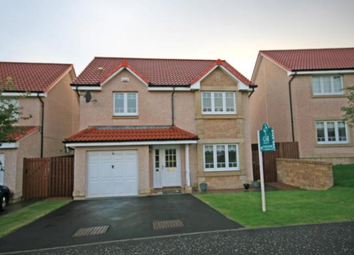 Thumbnail 4 bed detached house to rent in Cameron Way, Prestonpans