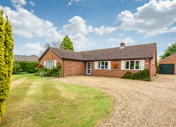 Thumbnail 4 bed detached bungalow for sale in The Street, Claxton