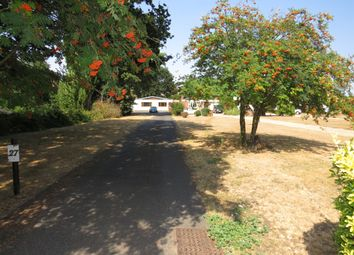 Thumbnail 4 bed detached bungalow for sale in Bucklesham Road, Purdis Farm, Ipswich