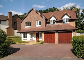 Thumbnail 5 bedroom detached house to rent in Rushmere Place, Englefield Green, Surrey