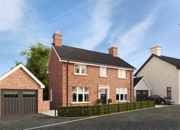 Thumbnail 4 bedroom detached house for sale in 27, Belvoir Park, Belfast