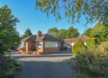 Thumbnail 4 bed detached bungalow to rent in Kenwood Gardens, Linton, Cambridge
