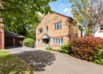 Thumbnail 4 bed detached house for sale in St Vigor Way, Colden Common, Winchester, Hampshire