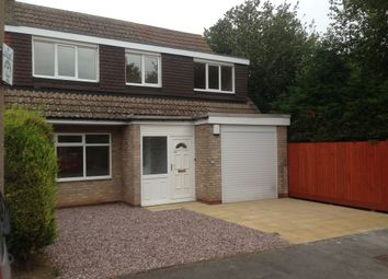 Thumbnail 4 bed semi-detached house to rent in Ambleside Walk, North Anston, Sheffield