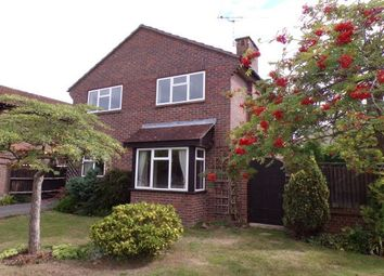 Thumbnail 4 bed link-detached house to rent in Newlyn Walk, Romsey