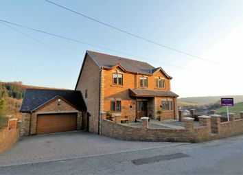Thumbnail 4 bed detached house for sale in Pentre Beili Place, Lewistown