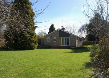 Thumbnail 4 bed detached bungalow for sale in Pitsford Road, Moulton, Northampton