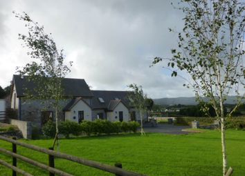 Thumbnail 2 bed cottage to rent in Porthyrhyd, Carmarthen