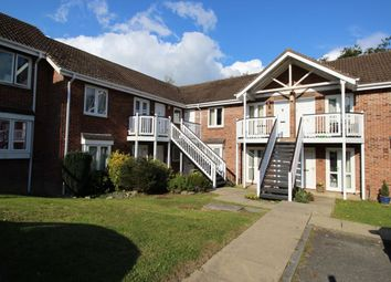Thumbnail 1 bed flat to rent in Mill Close, Newton Abbot