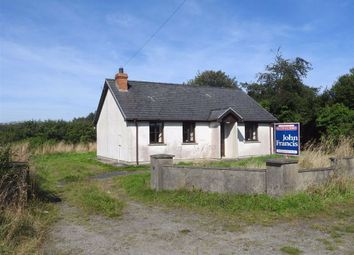 Thumbnail 2 bed farm for sale in Tanygroes, Cardigan
