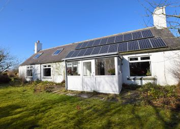 Thumbnail 4 bed bungalow for sale in Old Post Office, Kirk, Wick