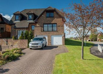 Thumbnail 4 bedroom detached house to rent in Rutherford Avenue, Bearsden, Glasgow