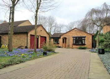 Thumbnail 3 bedroom detached house for sale in Davids Close, Werrington, Peterborough