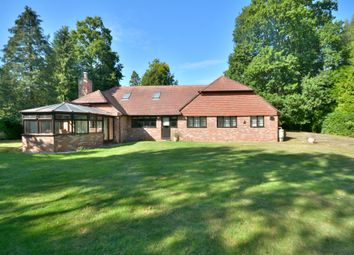 Thumbnail 4 bed detached bungalow for sale in Harborough Hill, West Chiltington, Pulborough