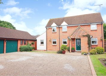 Thumbnail 4 bed detached house for sale in Furze Glade, Basildon