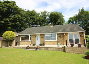 Thumbnail 2 bed detached bungalow for sale in Sycamore Road, Harrow Hill, Drybrook