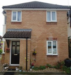 Thumbnail 1 bedroom property to rent in Harvard Court, Colchester, Essex