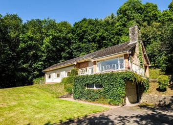 Thumbnail 3 bed detached house to rent in Whitney-On-Wye, Hereford