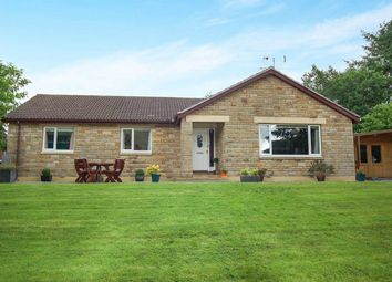 Thumbnail 3 bed bungalow for sale in Ardross, Alness