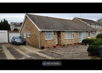 Thumbnail 2 bed bungalow to rent in Wayside Avenue, Worthing