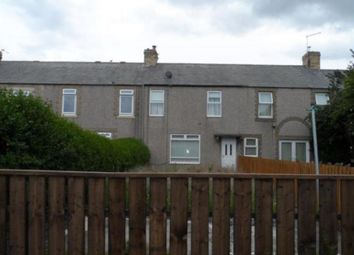 Thumbnail 2 bed terraced house to rent in Ingleby Terrace, Lynemouth