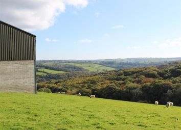 Thumbnail Land for sale in Chittlehamholt, Umberleigh