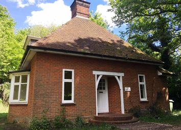 Thumbnail 3 bedroom property to rent in London Road, Suton, Wymondham